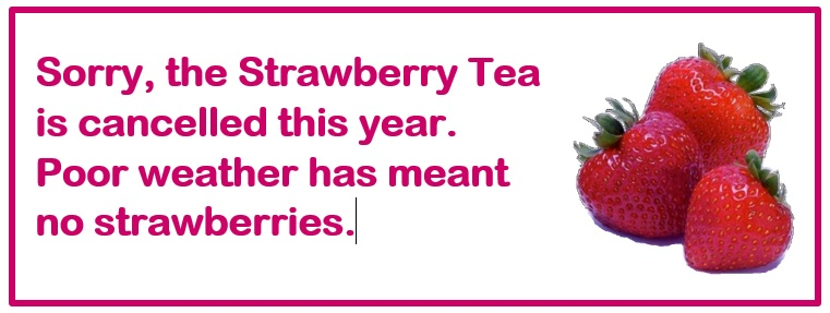 Strawberry Tea Cancelled